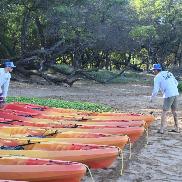 Kayak Tour Maui